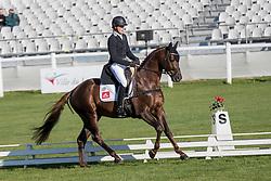 Meier Kai-Steffen, GER, Painters Maxim<br /> World Championship Young Eventing Horses<br /> Mondial du Lion - Le Lion d'Angers 2016<br /> © Hippo Foto - Dirk Caremans<br /> 20/10/2016