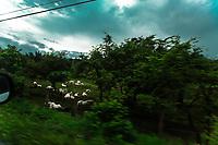 Costa Rica interior, on way to San Jose. Copyright 2017 Reid McNally.