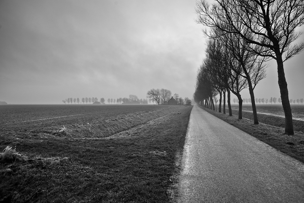 Landscape of plowed fields, a road, farms and rows of trees in the mist // Mistig landschap met omgeploegde akkers, een weg, rijen bomen en boerderijen.