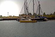 Sailboats at Port