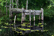 The reamins of a wooden structure (a flume perhaps?) on the edge of McLean Pond at Campbell Valley Regional Park in Langley, British Columbia, Canada