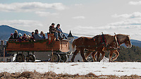 """With just a scant amount of snow left on the ground it felt more like """"Spring Fest"""" rather than Winter Fest at Prescott Farm Saturday afternoon.  Folks enjoyed the warm temperatures while taking a horse drawn sleigh ride provided by the Swain family of Heritage Farms as part of the days festivities. (Karen Bobotas/for the Laconia Daily Sun)"""