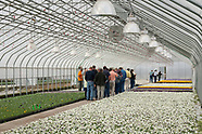 ColorPoint Greenhouses