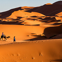 Tourists exploring the Sahara Desert