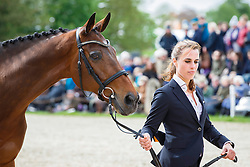 Blom Merel, (NED), Rumour Has It<br /> First Horse Inspection<br /> Mitsubishi Motors Badminton Horse Trials - Badminton 2015<br /> © Hippo Foto - Libby Law<br /> 06/05/15