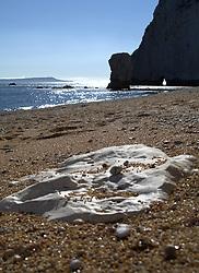 UK ENGLAND DURDLE DOOR 19AUG12 - Rocky coastline in sunny weather near Durdle Door, a landmark tourist attraction on the Dorest coast.....jre/Photo by Jiri Rezac....© Jiri Rezac 2012