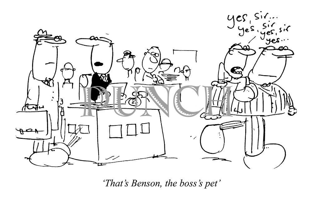 'That's Benson, the boss's pet'