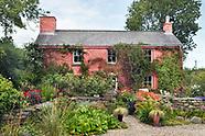Dyffryn Fernant - Wales, Summer