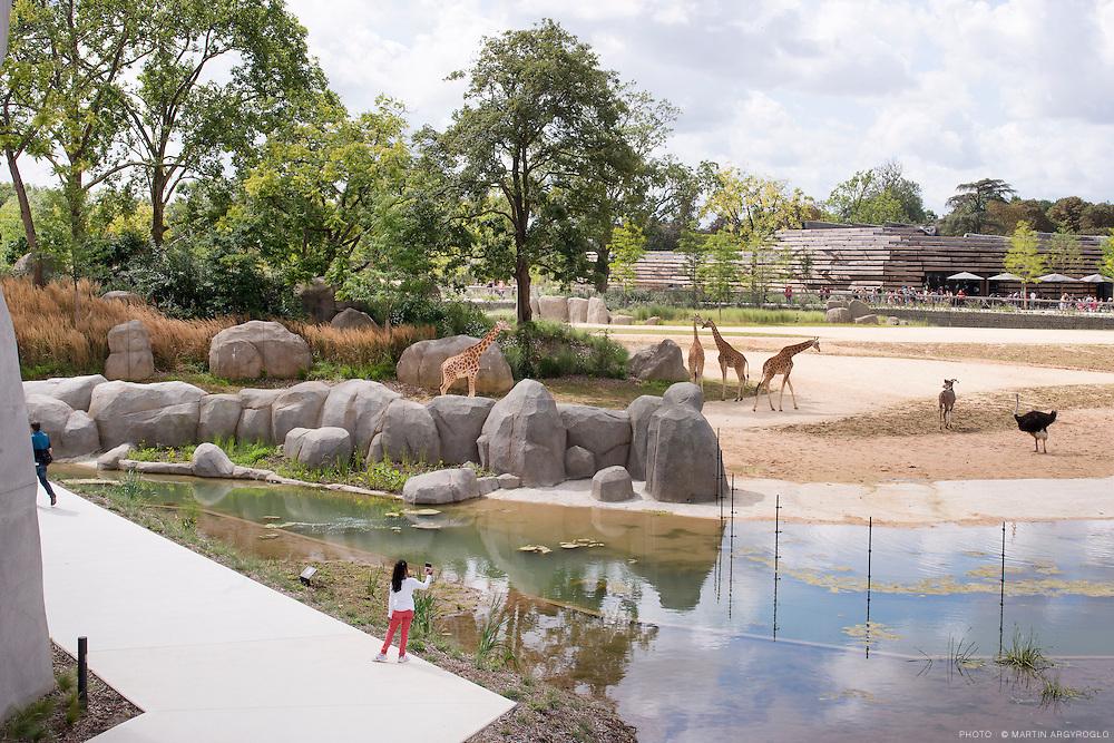 Parc zoologique de Paris (zoo de Vincennes) - 11/08/2014
