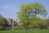 Belvedere Castle and a large willow tree near Turtle Pond in Central Park.