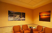 Blair Seitz images have been used to decorate board rooms, hospitals, banks and other businesses.