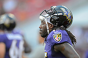 Baltimore Ravens wide receiver LaQuan Williams (15) during a preseason NFL game at Raymond James Stadium on Aug. 8, 2013 in Tampa, Florida. <br /> <br /> ©2013 Scott A. Miller