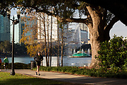 Runners on the path at Lake Eola Park in Orlando, Florida. Lake Eola Park is located in the heart of Downtown Orlando and home to the Walt Disney Amphitheater.