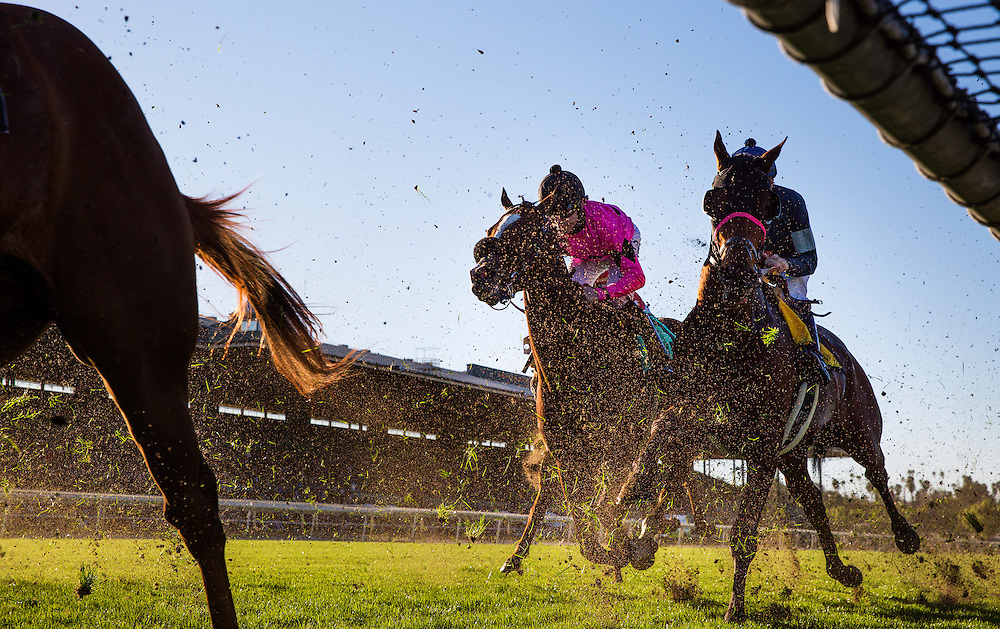 December 26, 2015: Vigilante races for position in the Mathis Brothers Mile at Santa Anita Park, Arcadia CA. Evers/ESW/CSM