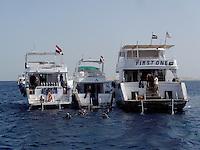 Dykkebåter i Triana National Park, Rødehavet
