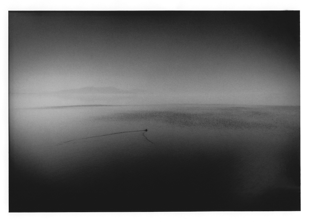 A migratory bird is swallowed up by the vastness of the saline Salton Sea, which sits below sea level in a desert basin near the US / Mexican border.  In 1901, heavy springtime runoff from a canal, fed by the Colorado River, breached its banks and created a lake 35 miles (52.5 km) long and 15 miles wide  (22.5 km) wide, Imperial County, California, USA.