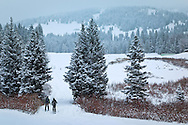 Two men cross country skiing in the valley of Togwotee Pass, Bridger Teton National Forest, Wyoming.  Model Released #0012010, #0022010