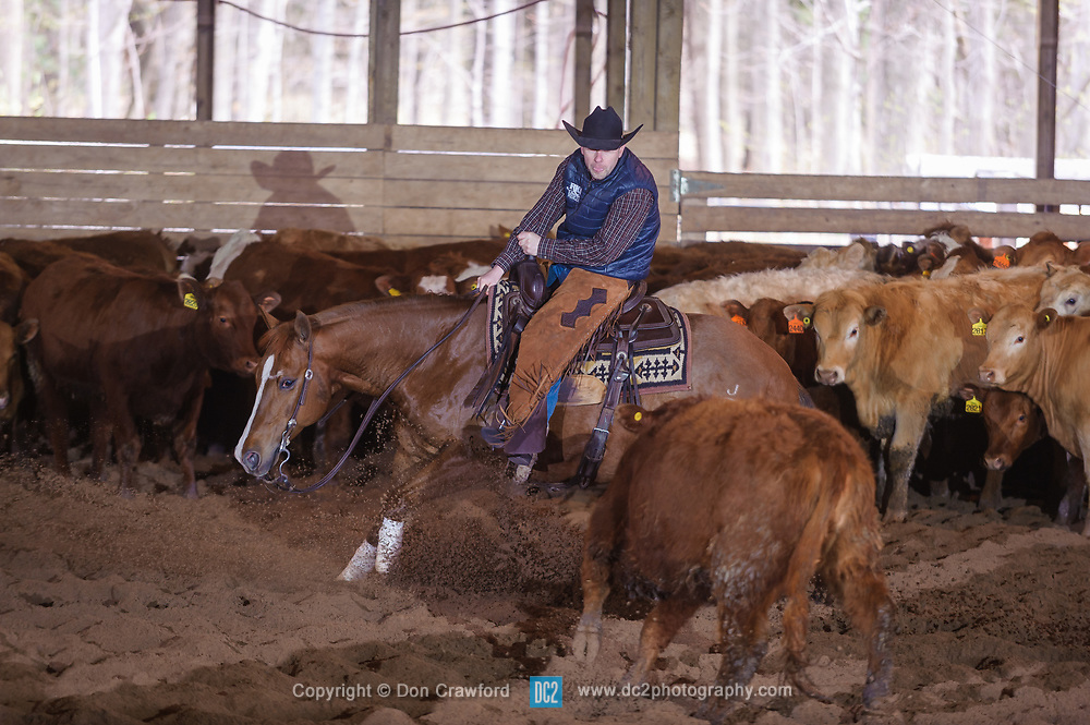 April 29 2017 - Minshall Farm Cutting 1, held at Minshall Farms, Hillsburgh Ontario. The event was put on by the Ontario Cutting Horse Association. Riding in the 25,000 Novice Horse Non-Pro Class is Eric Bouchard l on The Reyl Slim Shady owned by the rider.