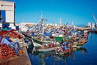 Maroc, Casablanca, port de peche // Morocco, Casablanca, fishing harbour