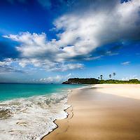 Ocean + Coastal