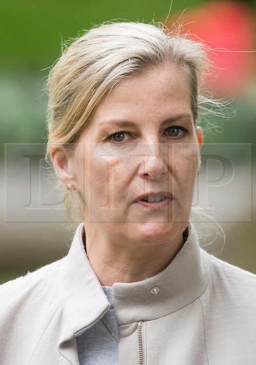 © Licensed to London News Pictures. 12/05/2018. Windsor, UK. Sophie, Countess of Wessex at day 4 of the 75th Royal Windsor Horse Show . The five day event takes place in the grounds of Windsor Castle. Photo credit: Ben Cawthra/LNP