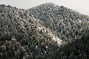 Winter in Mill Creek Canyon