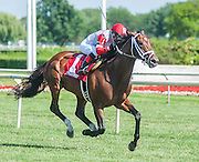 Dark Cove with Rosie Napravnik aboard won the Stars and Stripes S. grade 3 stakes race Saturday afternoon at Arlington Park in Illinois.