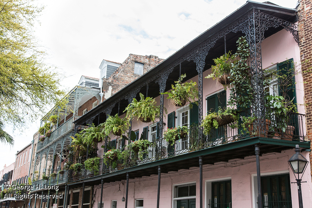 ferns in hanging baskets on French Quarter balcony