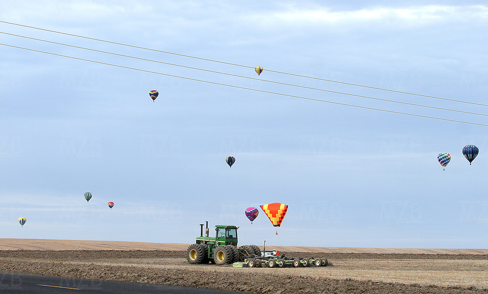 (a rising crop)  --  A healthy, rising crop of hot air balloons pop up over a tractor and fallow wheat fields off of Lower Waitsburg Road for the first official launch of the Walla Walla Balloon Stampede Saturday morning.        (5/10/08)        MZ Photo Scenic image from the Walla Walla Valley. Fall color and leaves, spring flowers, winter snow, and summer sun.