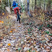 Heather Goodrich ripping singletrack in autumn.