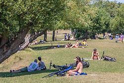 © Licensed to London News Pictures. 23/06/2020. London, UK. A sunbathers and picnickers in Richmond Park in South West London as forecasters predict a hot week ahead with temperatures expected to reach over 30c. Prime Minister, Boris Johnson announces that tourism and hospitality including pubs, restaurants and campsites can now reopen from the 4th of July as well as reducing the 2 metre rule to 1 metre.  Photo credit: Alex Lentati/LNP