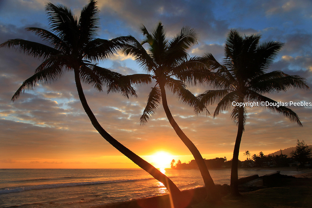 Sunrise, Punalu, Windward Oahu, Hawaii