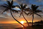 Sunrise, Punalu, Windward Oahu, Hawaii