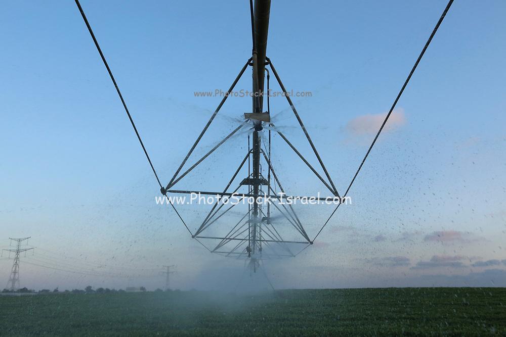 Automatic Sprinklers system (Irrigation robot) Irrigates a field n Emek Hefer, Israel