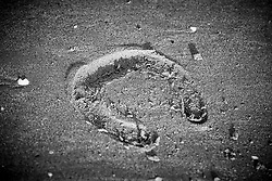 Hoof print<br /> Jumping International de La Baule 2019<br /> © Hippo Foto - Dirk Caremans<br /> 17/05/2019