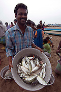 Fish auction and activity on the beach at Murthy Pudikuppam.  South India.