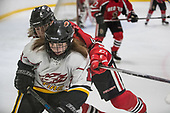 2017-11-10_Red Deer vs Fire White