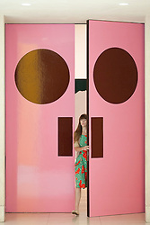 © Licensed to London News Pictures. 03/06/2013. London, UK. Doors painted by British artist Gary Hume entitled 'How to Paint a Door' (2002), leading to an exhibition of his work, are seen at the press view for the exhibition at the Tate Britain in London today (03/06/2013). The exhibition, running in tandem with an exhibition by British artist Patrick Caulfield, is open to the public from 5th June - 1st September 2013 at the Tate Britain. Photo credit: Matt Cetti-Roberts/LNP