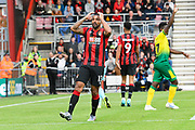 Callum Wilson (13) of AFC Bournemouth reacts after shooting at goal during the Premier League match between Bournemouth and Norwich City at the Vitality Stadium, Bournemouth, England on 19 October 2019.