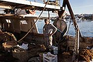 Lampedusa, Italia - Pescatori del peschereccio Elisa raccolgono il pescato del giorno. La pesca, come molte altre attivit&agrave; lampedusane, &egrave; in crisi.<br /> Ph. Roberto Salomone