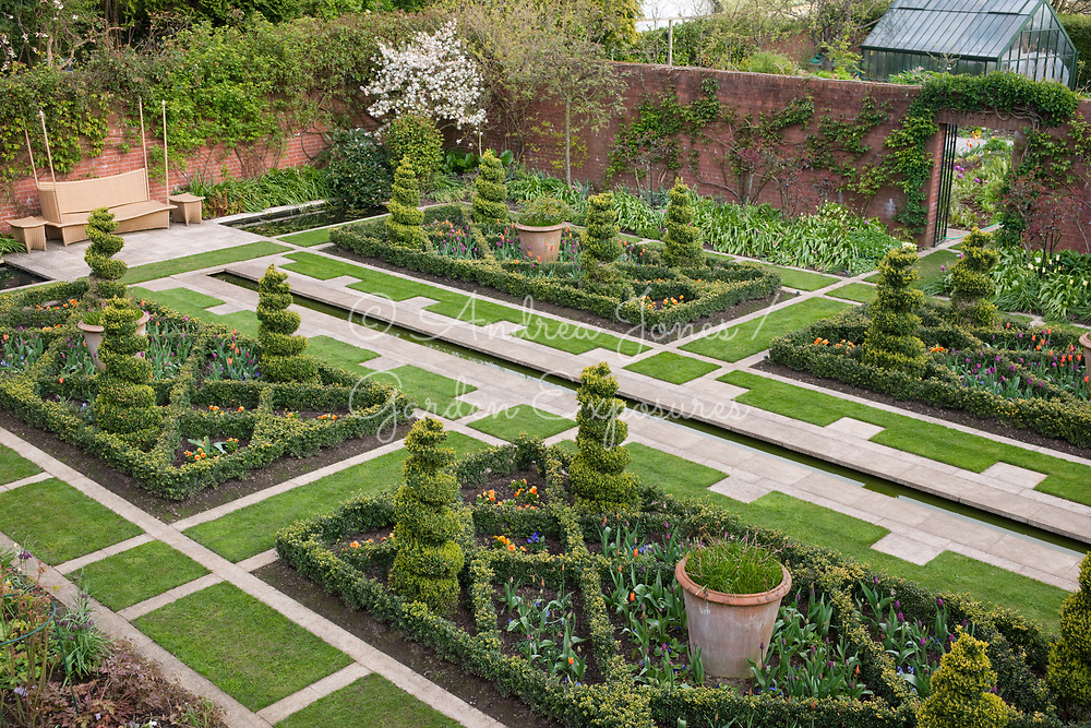 Walled garden in spring with parterre of box hedging and topiary spirals. Border planted with spring bulbs, Magnolia stellata, shrubs and roses. Rill water feature, lawn and contemporary seating.