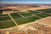 Irrigated crop fields, near Bourke, Western NSW, Australia