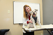 Desert Veterinary Medical Specialists