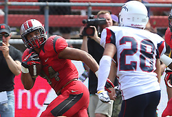 Sep 6, 2014; Piscataway, NJ, USA; Rutgers Scarlet Knights running back Paul James (34) runs for a touchdown during the first half at High Points Solutions Stadium.