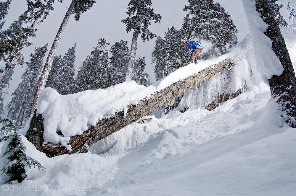 Professional snowboarder Dave Short rides down a fallen log on a stormy day on Whistler Mountain, British Columbia, Canada.