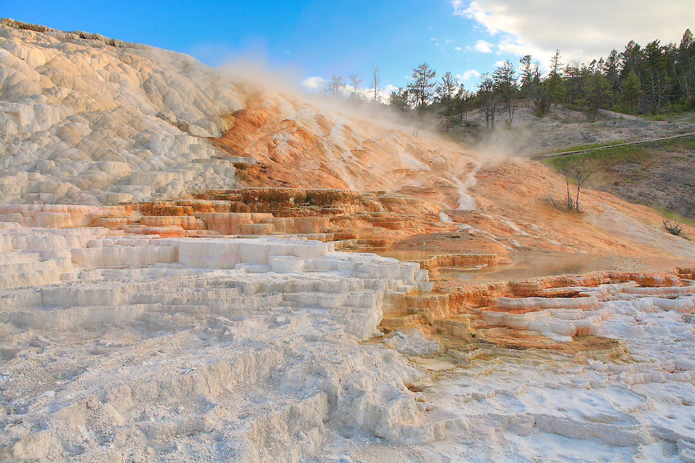 Lower Terrace Geyser Deposits - Mammoth Terrace Hot Springs - Yellowstone National Park