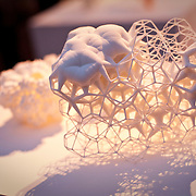 3D PRINT SHOW.Daniel Widrig's Gridspace and Fractal forms.Some of the most forward thinking minds from the worlds of technology, design, art and fashion come together to showcase truly innovative works that have been made possible through the medium of 3D print. The show plays host to some of the biggest names in 3D printing including 3D Systems, MakerBot and Autodesk. 3D Print Show gives many consumers the chance to interact with 3D print technology and see the possibilities for the first time, London, UK
