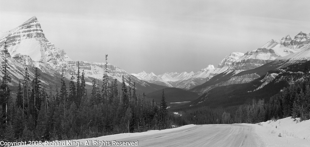 Dawn on the Icefields Parkway