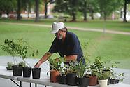 um-plant swap 051310