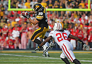 October 23 2010: Iowa Hawkeyes tight end Brad Herman (39) tries to pull in a pass in front of Wisconsin Badgers cornerback Antonio Fenelus (26) during the first half of the NCAA football game between the Wisconsin Badgers and the Iowa Hawkeyes at Kinnick Stadium in Iowa City, Iowa on Saturday October 23, 2010. Wisconsin defeated Iowa 31-30.